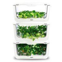 Vegebox™ Home - Hydrokultur Indoor Home Garden