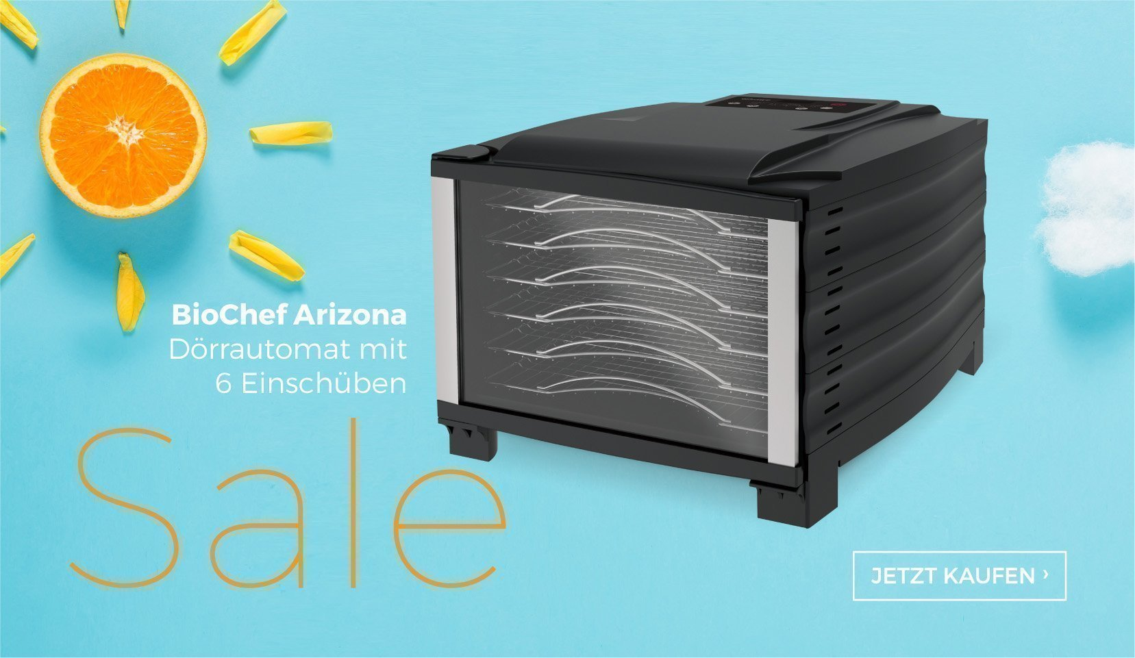 v4l-summer-sale-2019-DE-arizona-6T